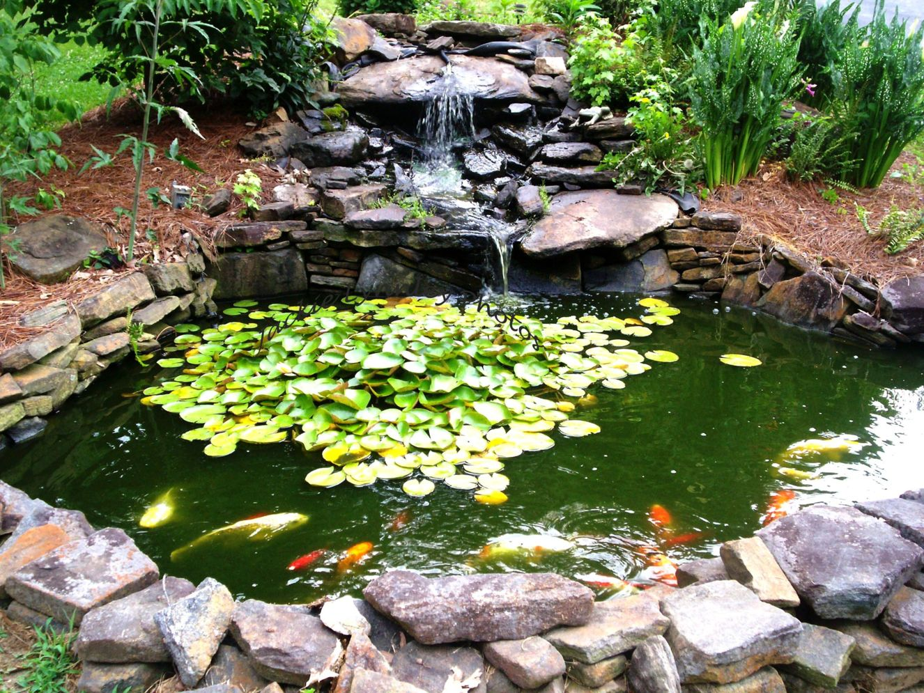 32 Small Fish Pond Designs Look Perfect For Improving Tiny Garden Landscape Shairoom Com